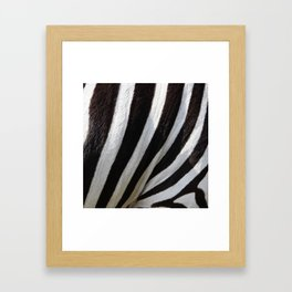 Zebra Skin Framed Art Print