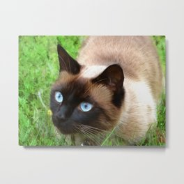Sulley Loves The Sunshine Metal Print