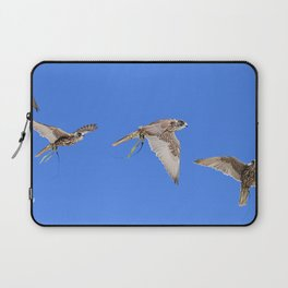 Falconry Composite, Bird of Prey Laptop Sleeve