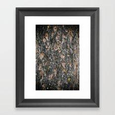 Tree Bark 1.0 Framed Art Print