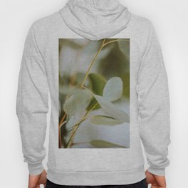 Modern MInimalist Nature Photography Close Up Of Mint Green Leaf Natural Organic Shapes Hoody