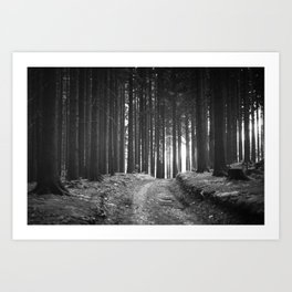 Forest (Black and White) Art Print