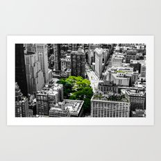 NYC - Green Park Art Print