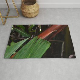 Leaf-Wrapped Bamboo in Tropical Forest: Fine Art Photo Rug