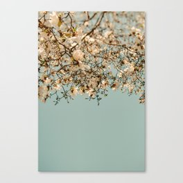 Falling Into Spring Canvas Print