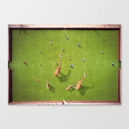 Giraffes playing soccer Canvas Print