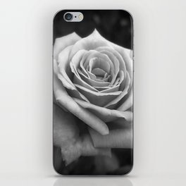Pink Roses in Anzures 4 B&W iPhone Skin