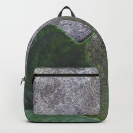 Urban Plant hydrangea leaves on concrete wall Backpack