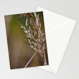 The Wind Blows through the Wheat Stationery Cards