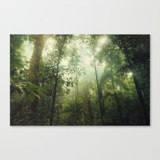 Penetration Canvas Print