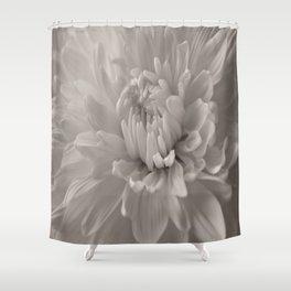 Monochrome chrysanthemum close-up Shower Curtain