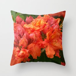 Beautiful red ones Throw Pillow