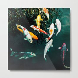 one fish, two fish... Metal Print