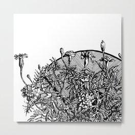 Bouquet of marigolds Metal Print