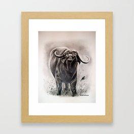Búfalo Framed Art Print
