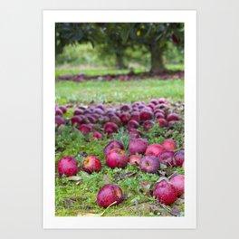 Let's pick apples Art Print