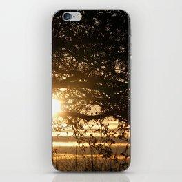 Spring Sunset iPhone Skin