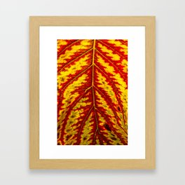 Tiger Leaf Framed Art Print