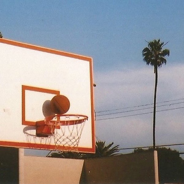 photo of palm trees and basketball hoop by Jeremiah Gallagher