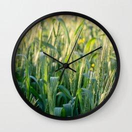 Summer goodness Wall Clock