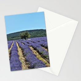 Lavender field, Provence, France Stationery Cards