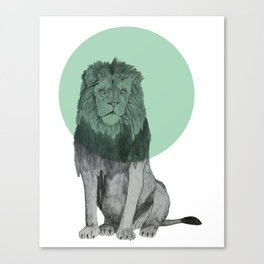 sitting lion Canvas Print