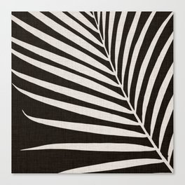 Zebra Palm / Black and White Palm Frond Canvas Print