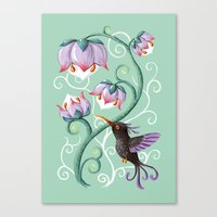 hummingbird Canvas Prints featuring Hummingbird by Freeminds