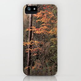 Autumn impression iPhone Case