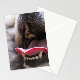 Lots of Licks Stationery Cards