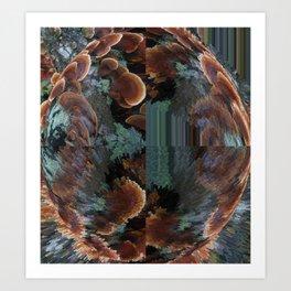 Quadrant Polypores Art Print