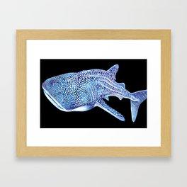 Whale shark Framed Art Print