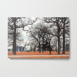Park view at Belle isle in Detroit Metal Print