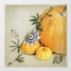 pumpkin & passiflora Canvas Print