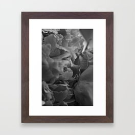 Textured Peonies Framed Art Print
