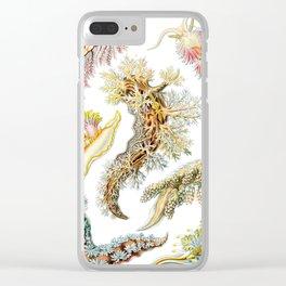 Ernst Haeckel - Artforms in Nature: Nudibranchia, 1904 Clear iPhone Case