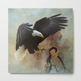 Eagle's Landing Metal Print