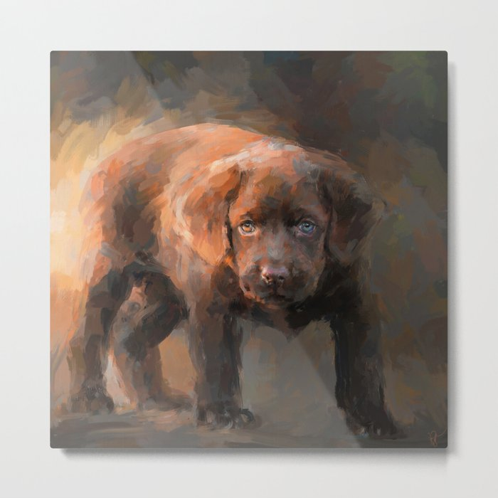 A Little Bit of Chocolate Lab Metal Print