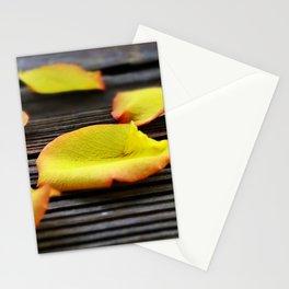 Rose Petals Stationery Cards
