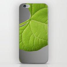 green bean leaf II iPhone & iPod Skin