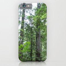 California forest Slim Case iPhone 6s