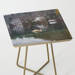 Swans on the Apsee lake, Bavrian alps II Side Table