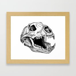 Bear skull Framed Art Print