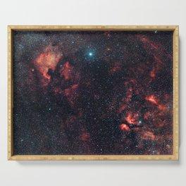 Cygnus Constellation Serving Tray