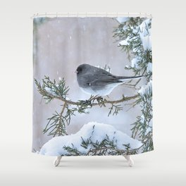 Snow Day Junco Shower Curtain