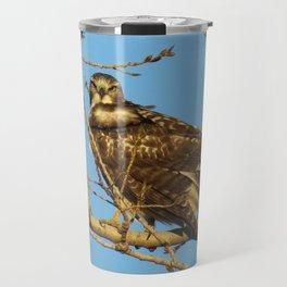 Redtail Hawk Travel Mug