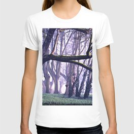 old trees in the middle of the forest T-shirt