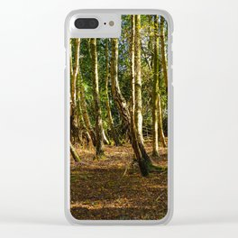 Silver Birch Tree Trunks Clear iPhone Case