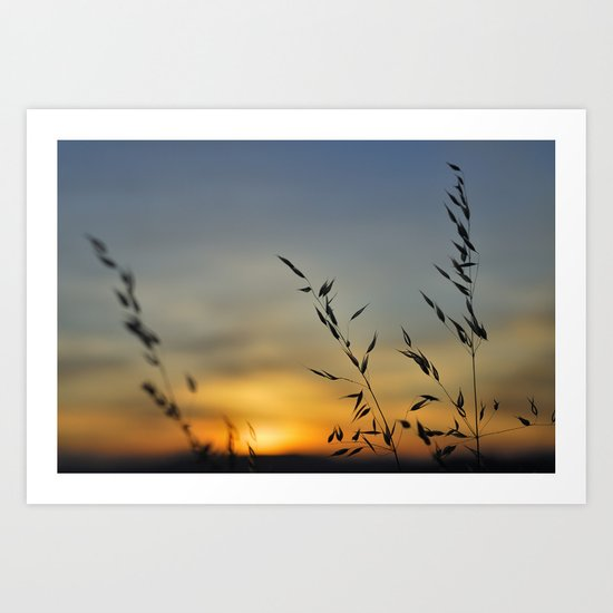 Blowing in the red wind Art Print