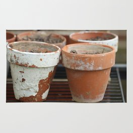 Flower Pots with Texture Rug